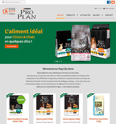 Création site internet ecommerce France madagascar Suisse